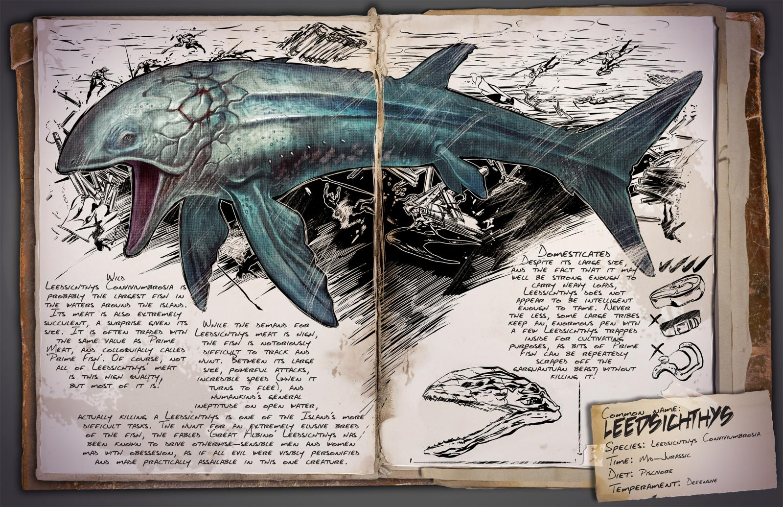 large.Leedsichthys.jpg.9f1aea74991db6102