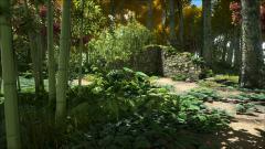 Ruins - Jungle