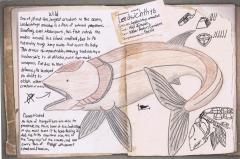 Fanmde Dossier-Leedsichthys armatae