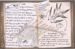 Fanmade Dossier-Kentrosaurus clavum