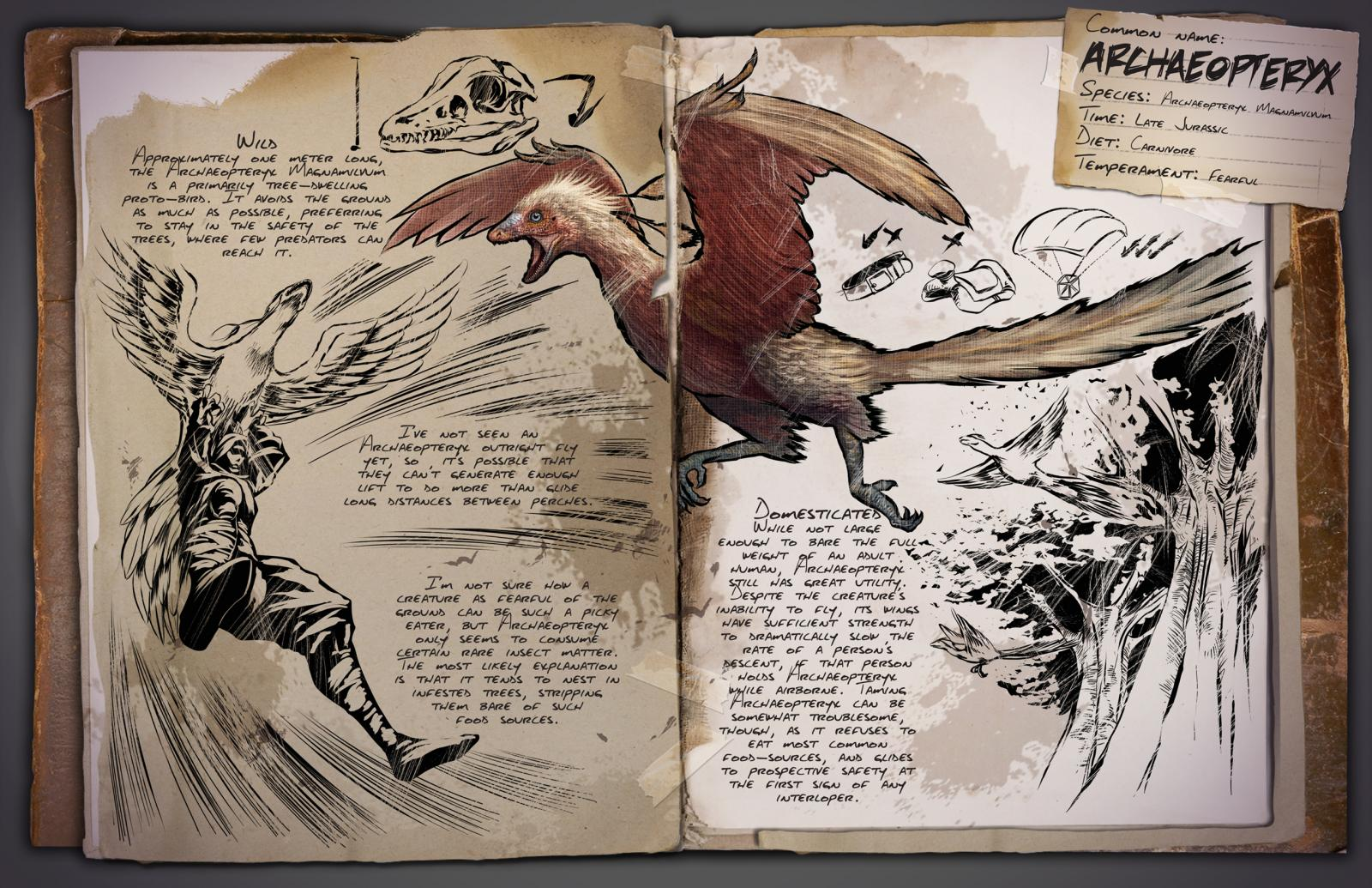 large.Dossier_Archaeopteryx.jpg.ae6e50e2