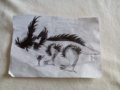 stirakosaurus