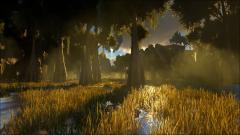 Epic Settings - Swamp