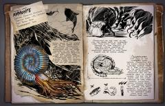 Dossier: Ammonite