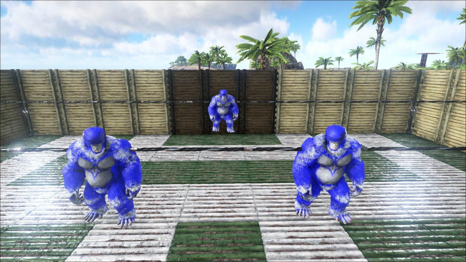 The Blue Mongos [Foosball]