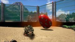 Goldie & Rex Egg