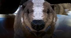 Beavers,Uncuffed & Unleashed