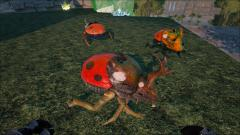 Ladybug Dungbeetle by Sharkcat