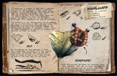 Anomalocaris by KAMIKAZY