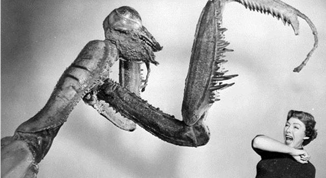 Massive-Prehistoric-Insects-Old-Horror-Film.jpg