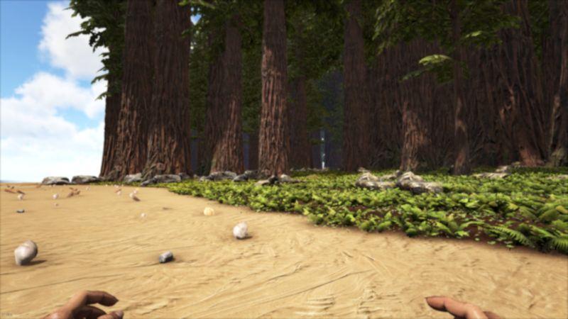 FLATredwoods.jpg