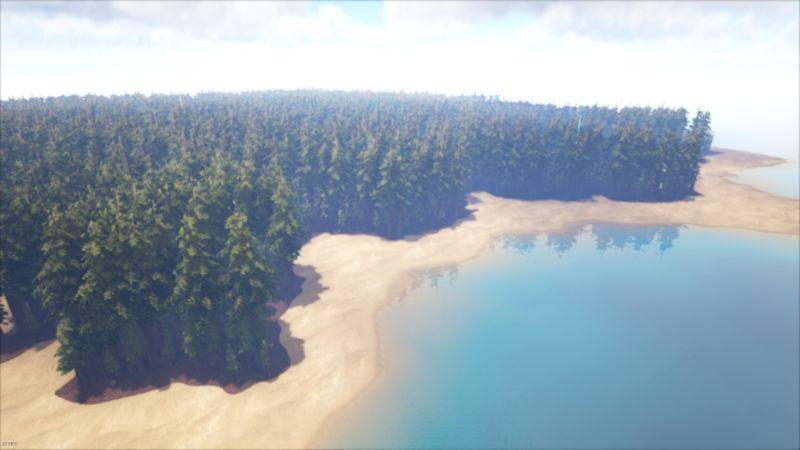 FLATredwoods2.jpg