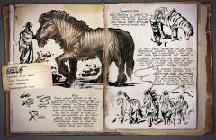 Dossier: Equus