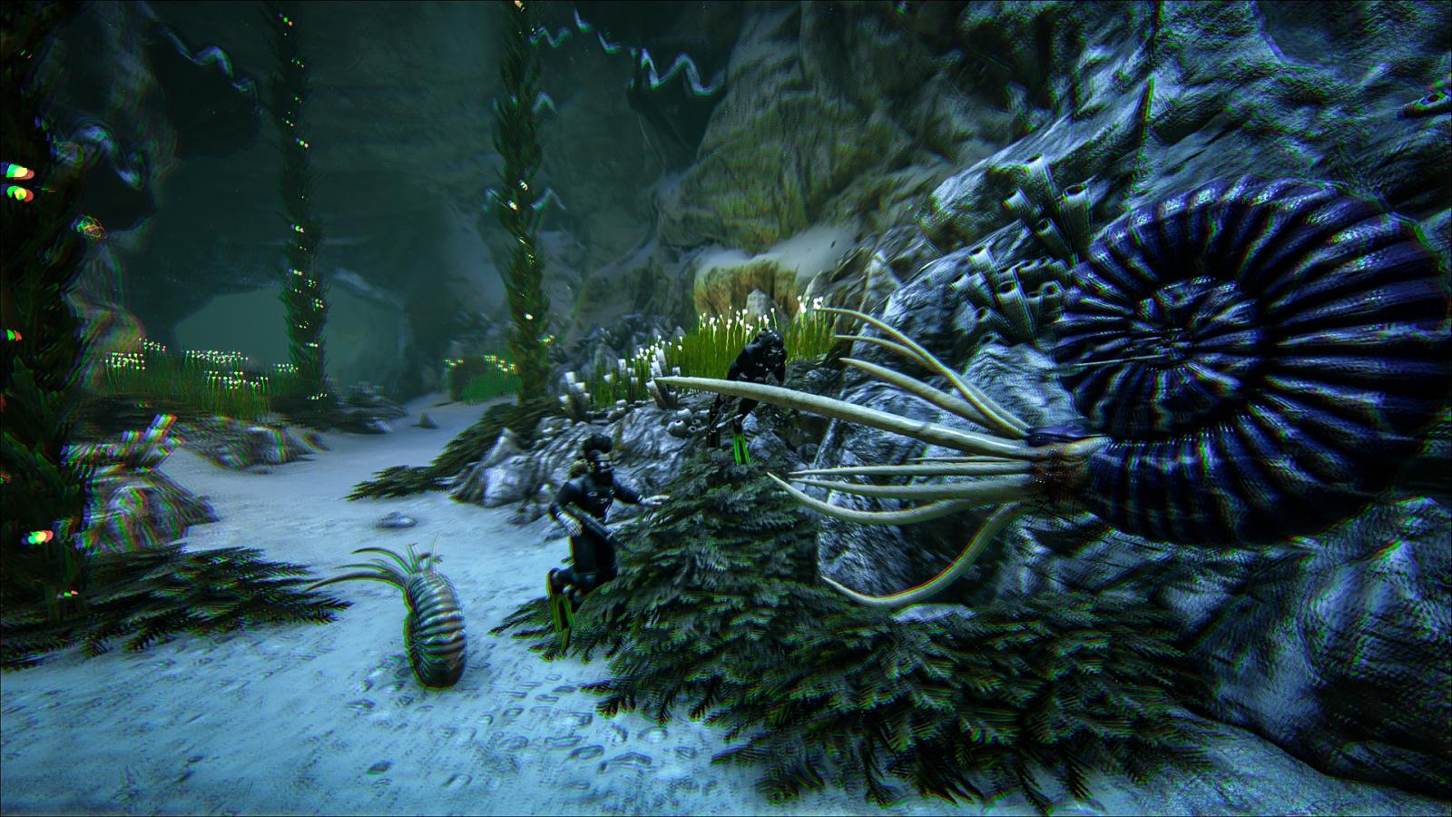 large.Ammonite.jpg