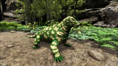 Forest Camo Moschops