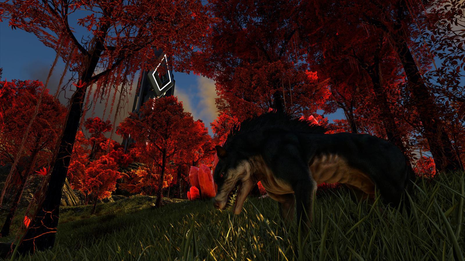 large.598e53bd5ea60_WolfAngelus-HunteroftheBloodForest-8x.jpg