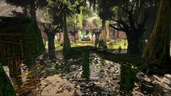 aSwamp Walk4.jpg