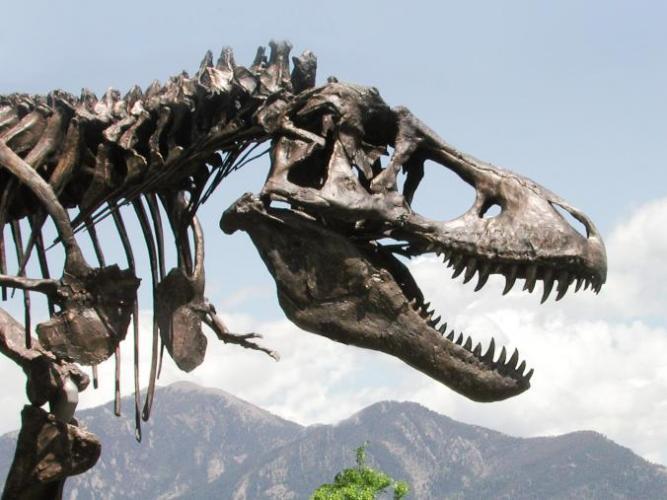 The Wankel T. Rex - 9 tons.jpg