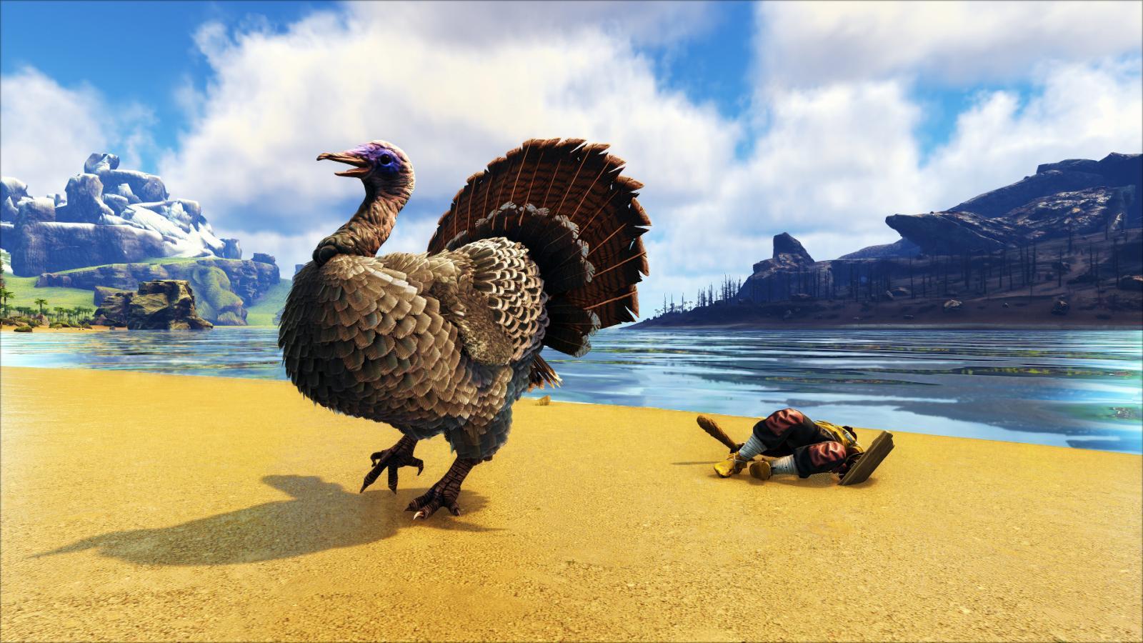 large.5a220b42880ba_BlueDragon-Turkey1Survivor0.jpg