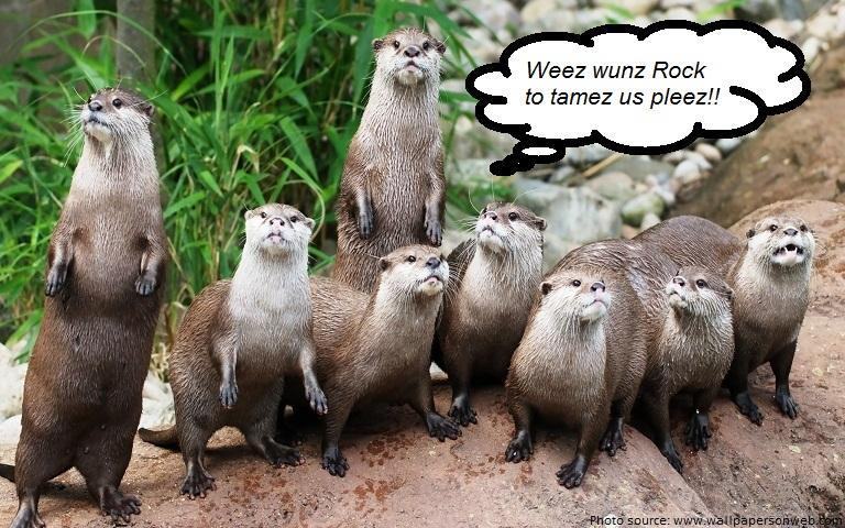 otters-family-tame us.jpg