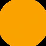 Nixellion