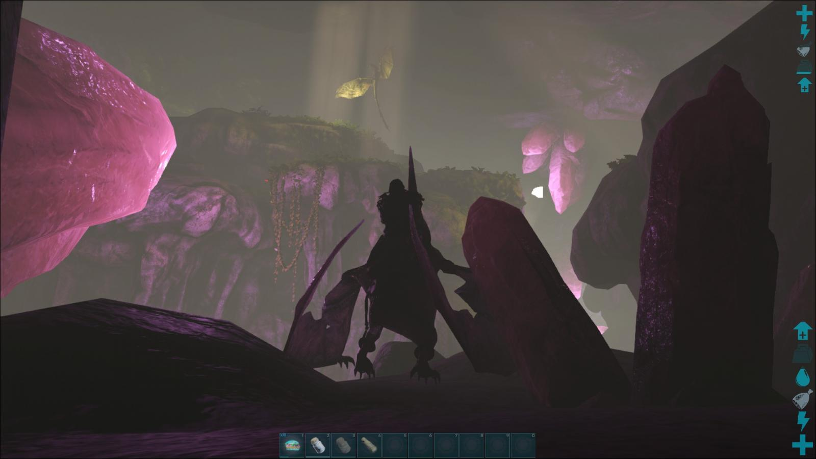 Wyvern egg search... but there is a bug with the eggs