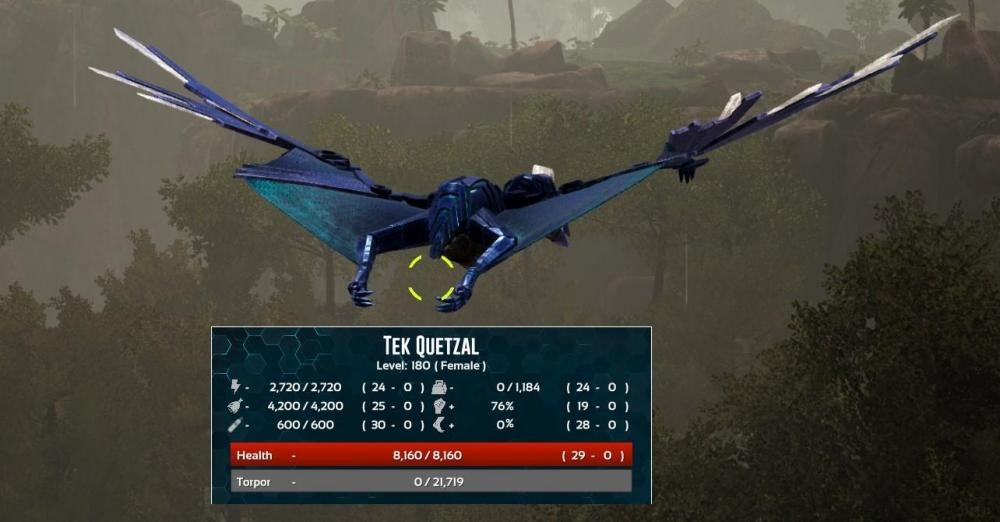Quetzal Purpose & Leveling - Thoughts or Advice? - General