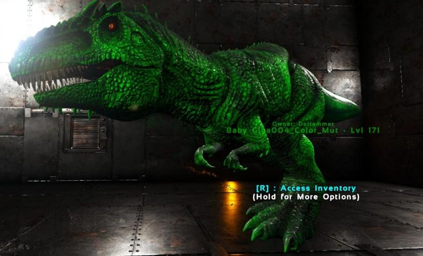 Giga004_Color_Mut_and_MD_Mut_Image2.jpg