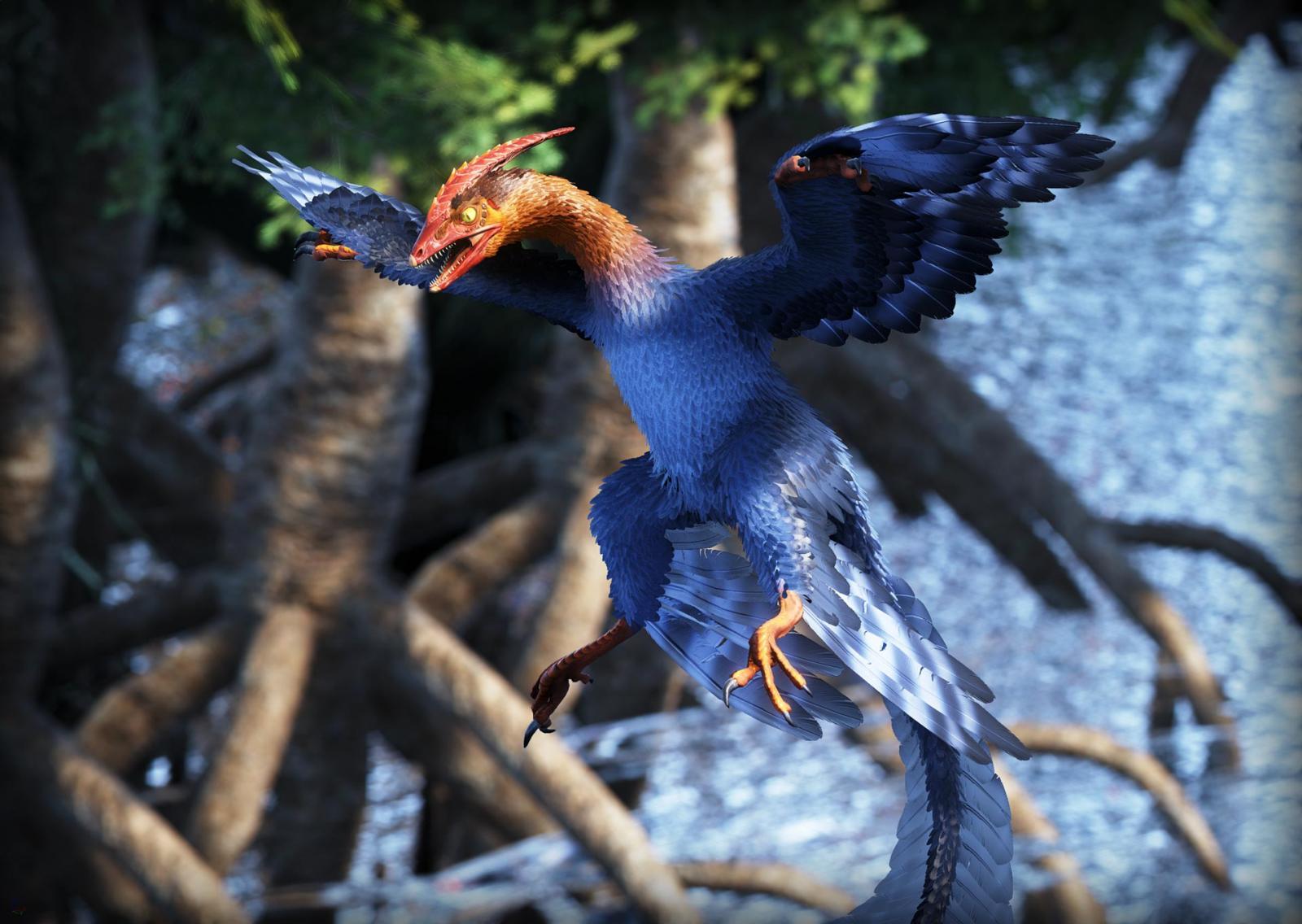 large.WyvernLang---Microraptor.jpg