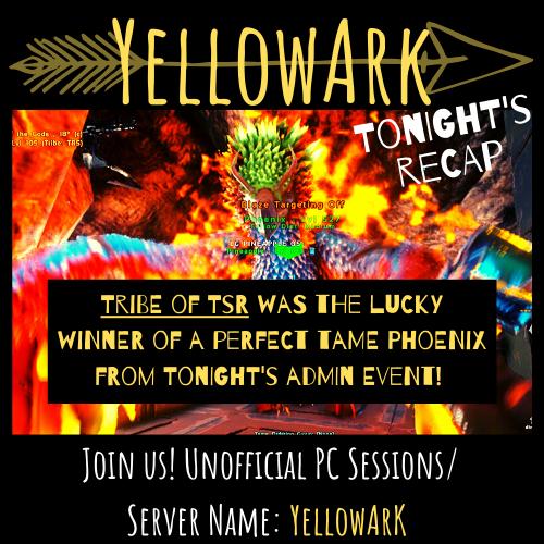 YellowArk Tonight's Recap