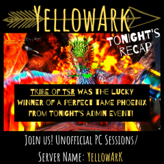 YellowArk Tonight's Recap