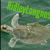 RidleyLongnose