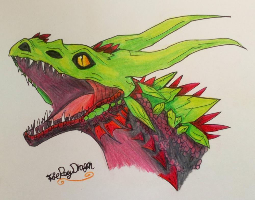 wyvern_queen_headshot_by_fireraydragon_de50o2q-fullview.jpg