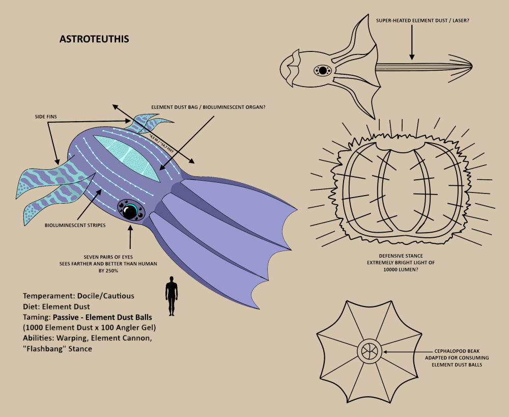 astroteuthis_sketch.thumb.png.6218a0d95565687c65bf870b14243386.png