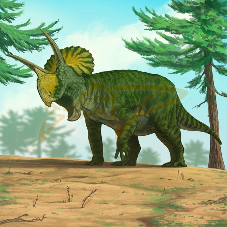 1621582322_commission__triceratops_by_finwalsmd_dejwvit-fullview.jpg