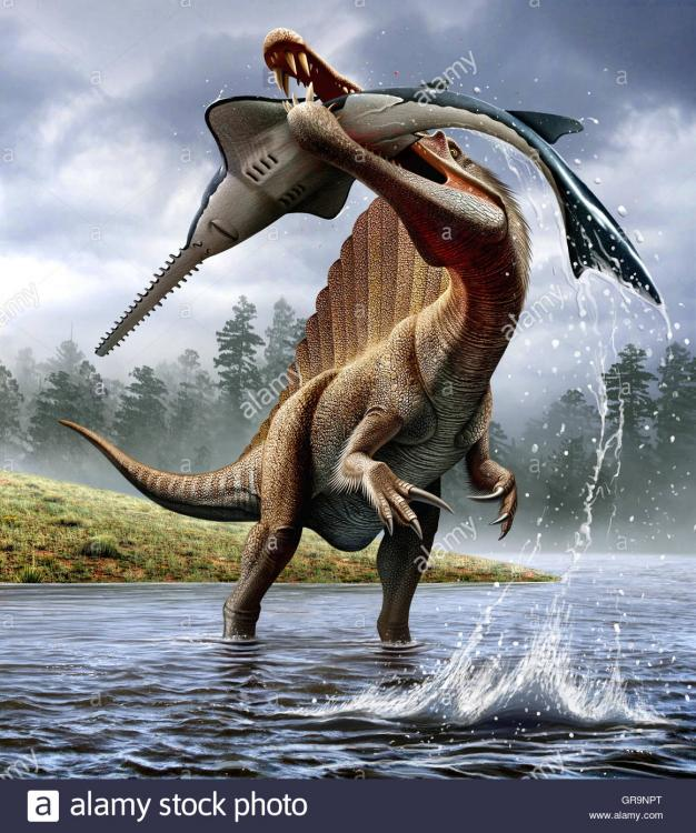 cacce-spinosaurus-un-onchopristis-gr9npt.jpg